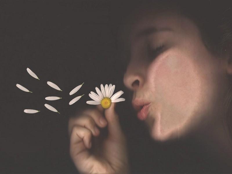 Lilas Deprisco